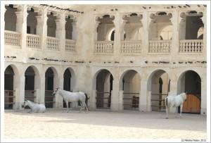 Доха. Катар. Форт  Al Khoot