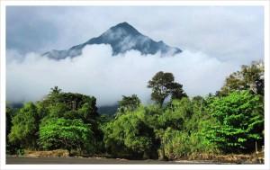 Вулкан Камерун